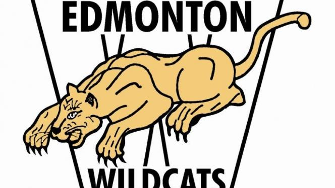 Wildcats Add Coaches